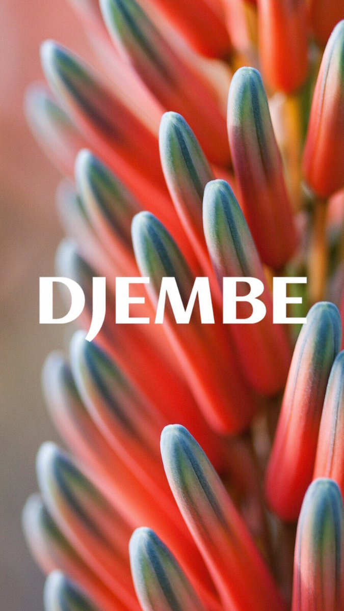 Let's gather today in peace at Djembe.    There will be music by Nii Tei, Eveava + @richiehellmusic , vendors such as @techniquerecs @invt305 + more, and lots of fun!   Located at Palapa in #UpperBuenaVista from 4-11PM, Saturday Nov. 16th. #miami #musicpic.twitter.com/USTgG21yhi