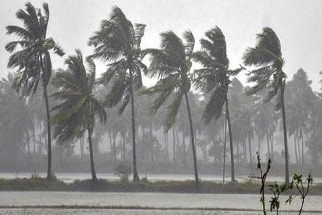 #CycloneBulbul: West Bengal hands over reports on impact to central team https://www.financialexpress.com/india-news/cyclone-bulbul-west-bengal-hands-over-reports-on-impact-to-central-team/1766760/ …