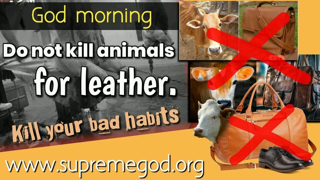 #SaturdayMotivation Do not kill animals for leather. Kill your bad habits