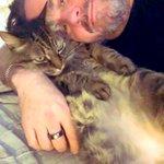 #Caturday With Mr. Rikki Ricardo Felipe Rodriguez Robertson I