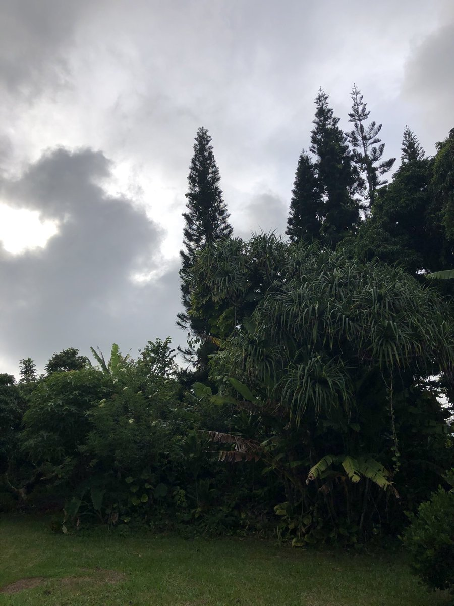 test Twitter Media - Overcast and calm in haiku. #cmweather #Maui https://t.co/viZb3jrDeG