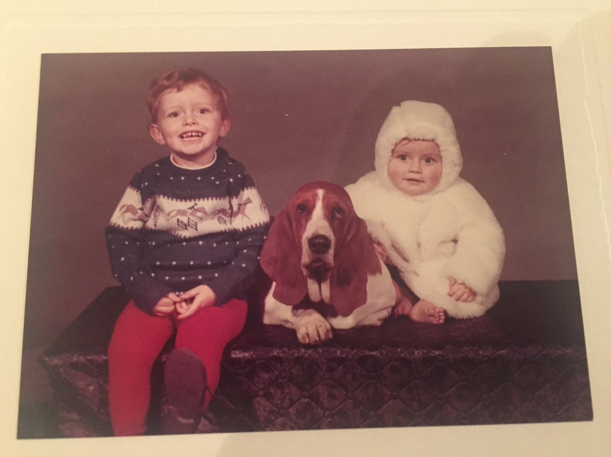 @Phil_Sledge - @JoleeMockler got me to look at your #vlog. Adored it. Enjoy #luxury #travelblog  in return. From a #bassethound lover in #London.