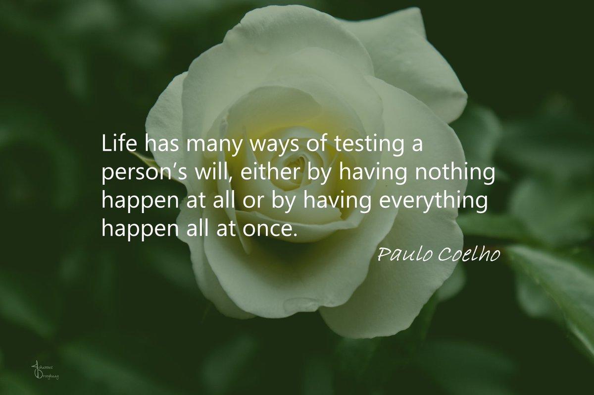 🔵 Life has many ways of testing a person's will, either by having nothing happen at all or by having everything happen all at once. @paulocoelho #PauloCoelho #ThinkBIGSundayWithMarsha #QOTD #IQRTG #SundayMotivation #SundayMorning @Dahl_Consult @NevilleGaunt @LoriMoreno