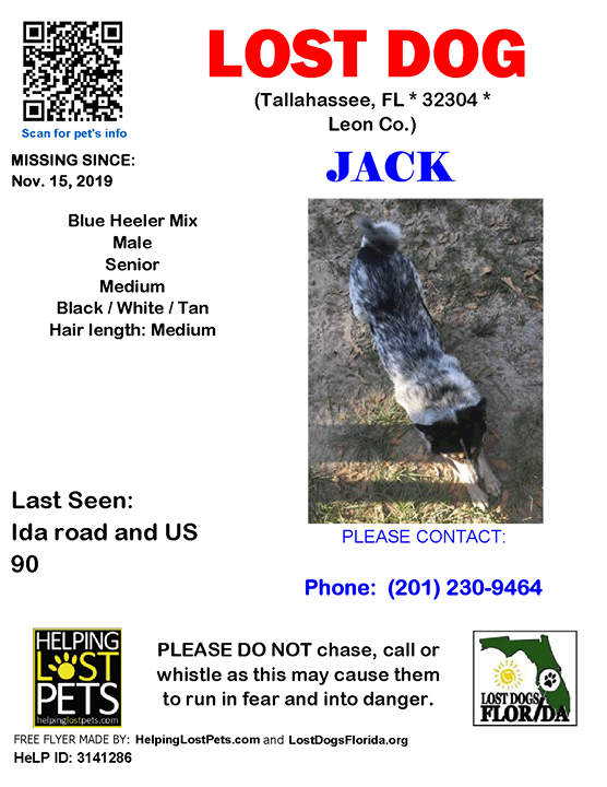 LOST SENIOR DOG ~  Have you seen Jack?  #LOSTDOG #Jack #Tallahassee (Ida road & US 90)  #FL 32304 #Leon Co. , #Lost #Dog 11-15-2019!, Male #Mix / #BlueHeeler Mix Black / White / Tan/ Senior  CONTACT Phone: (201) 230-9464  More Info, Photos and to Contact: …
