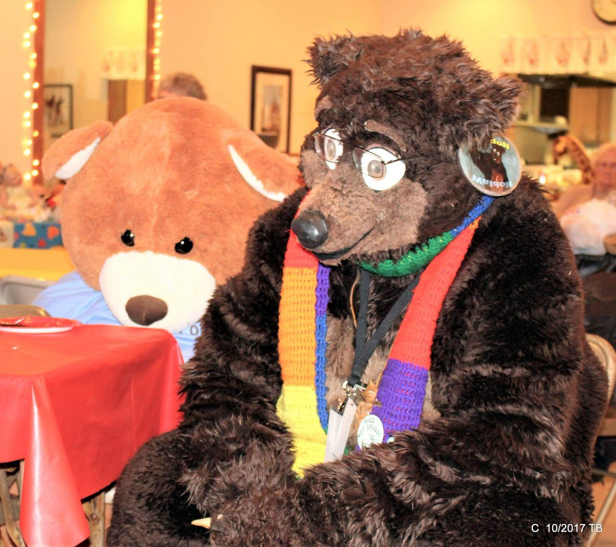 #FursuitFriday #fursuiteveryday Waldolf watching a slide show about teddy bear collecting with a very large #teddybear behind him at the 2017 #OctoBEARfest in #Toldeo Oh,