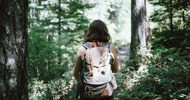 It's #NationalTakeAHikeDay!   An Insider's Guide to Hiking in Cuyahoga Valley National Park: