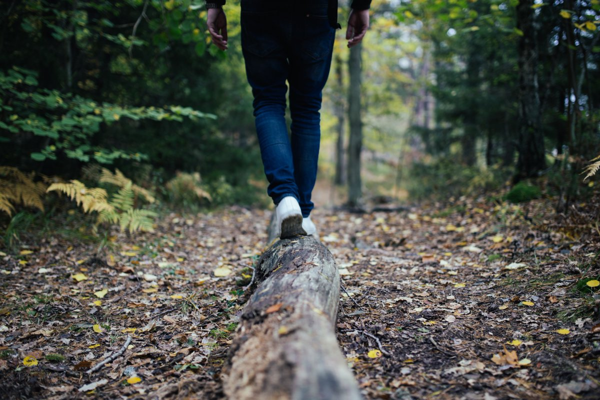 Today is National Take a Hike Day! Hiking can be a great stress reliever, exercise choice, and an opportunity to enjoy the great outdoors. Find a trail and get started! #nationaltakeahikeday #hiking #outdooractivities