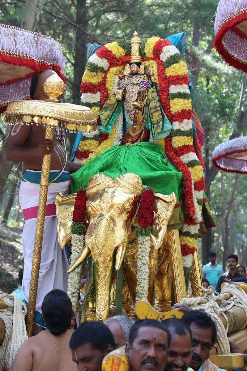 #Kartika Vana Bhojanam event held in a grand manner at the Parveta mandapam.lord #Malayappaswamy along with his consorts were taken on Gaja Vahanam from Srivari temple to Parveta Mandapam where grand snapana thirumanjanam was performed.#Tirupati #tirumala#Ayodhya#india