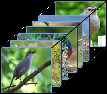 test Twitter Media - Memory-Based Neighbourhood Embedding for Visual Recognition. (Suichan Li et al.)  Paper: https://t.co/r1CLBhacrz  #machinelearning #artificialintelligence #computervision #patternrecognition https://t.co/9PW5GuwDNT