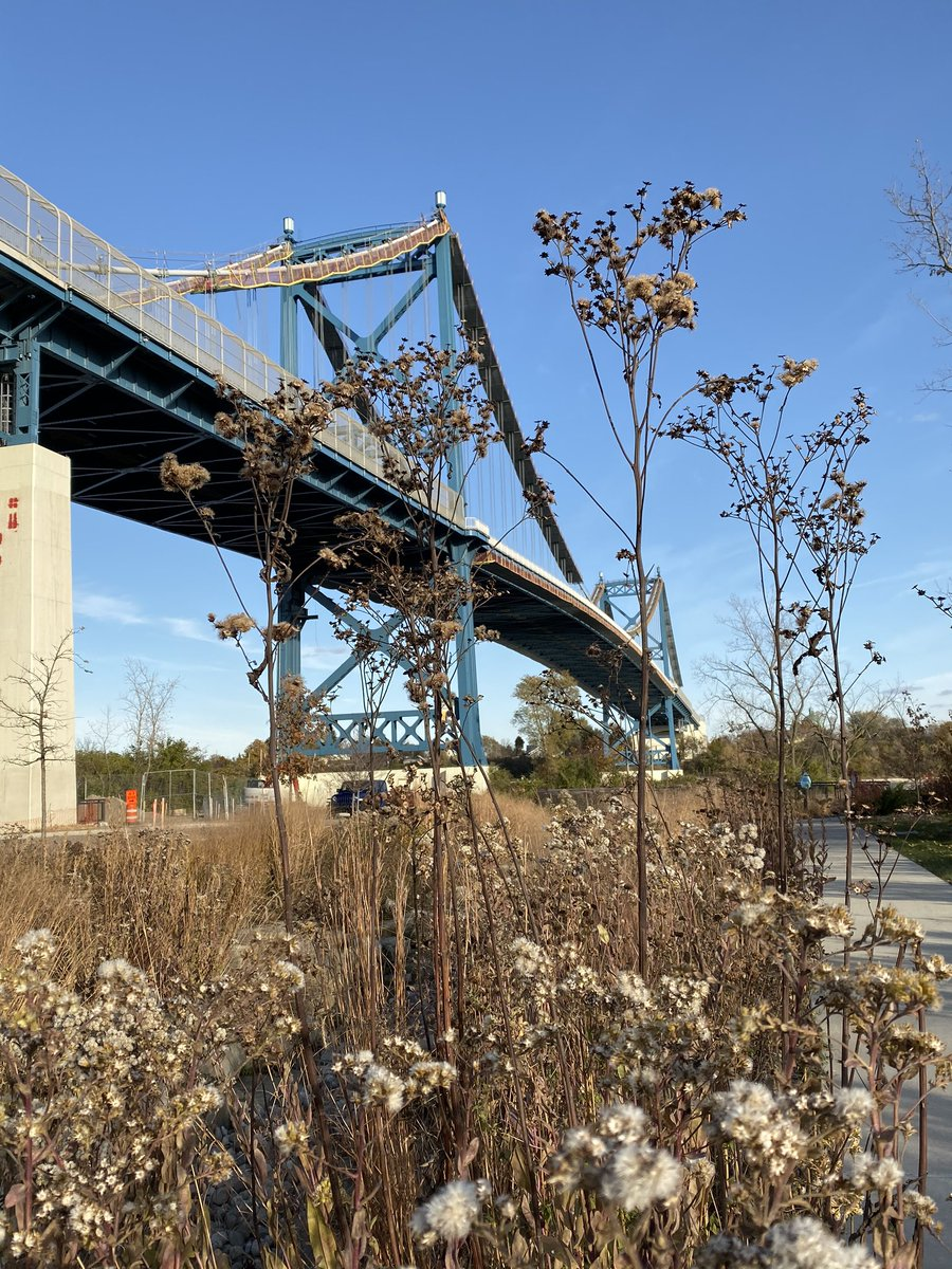It's #NationalTakeAHikeDay. We suggest Middlegrounds @MyMetroparks. 🥾🍂