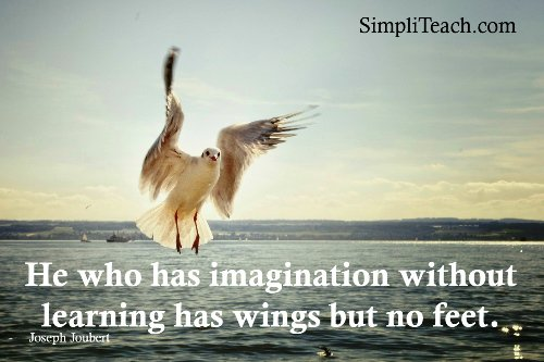 I'd probably choose wings over feet if pressed, but both would be ideal... #teaching #learning