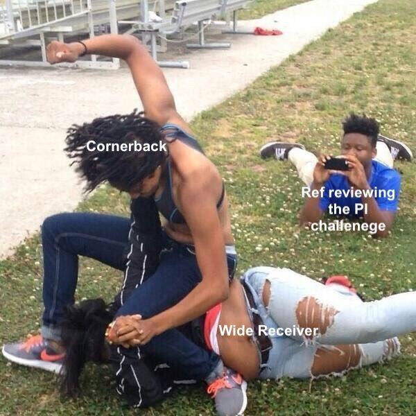 NFL officiating summed up