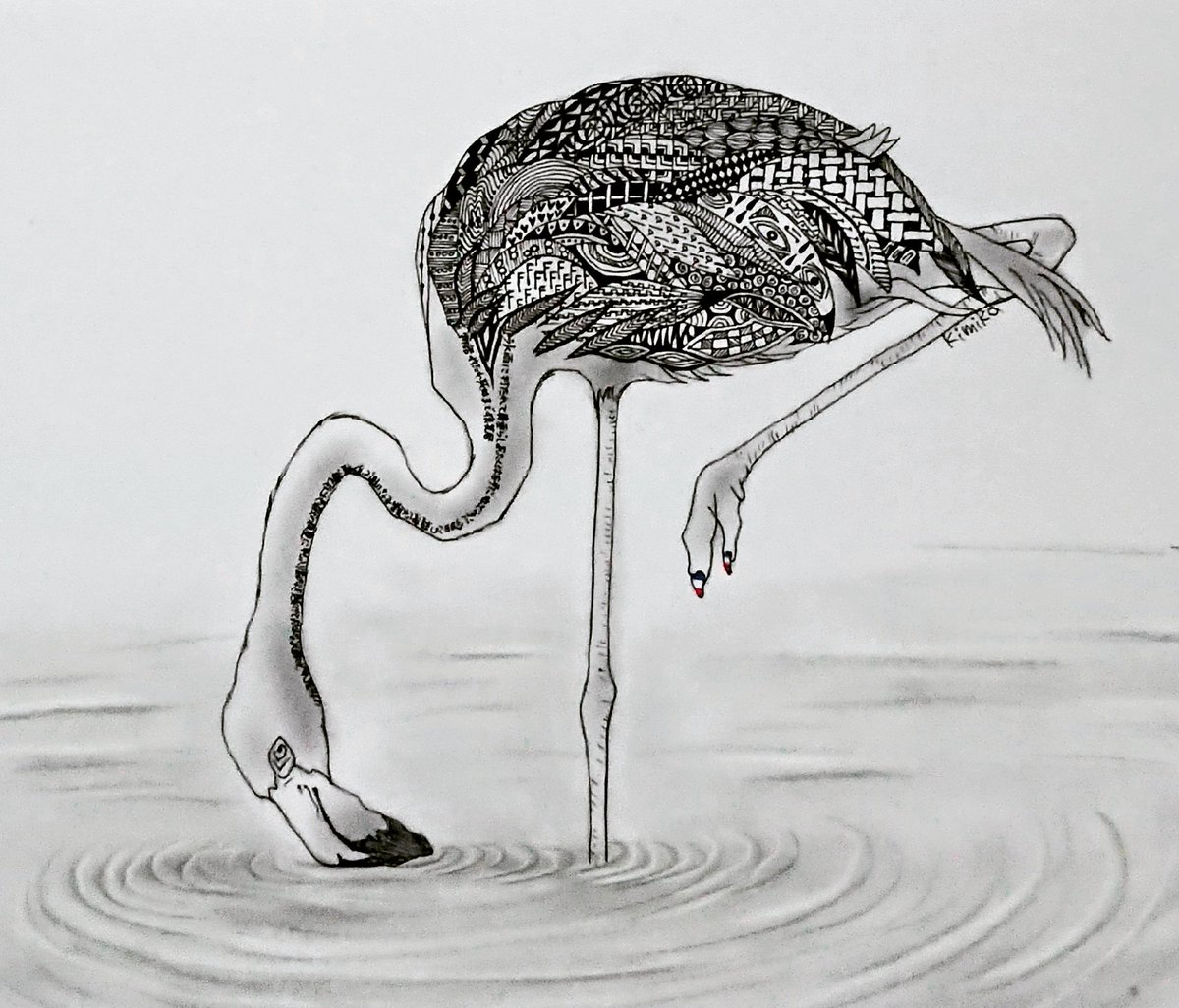 ゼンタングル師匠のるかさん(@ruruka888)に教えてもらって描いてみました☺️Flamingo🦢☺️#ゼンタングル #鉛筆画 #flamingo