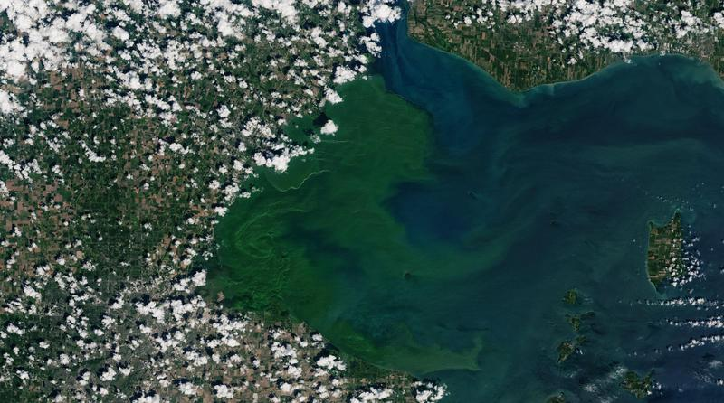 Replying to @wosunews: Ohio Farmers Support Lake Erie Protections After DeWine Promises State Funds