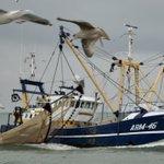 Image for the Tweet beginning: #NoordZee #visserij #kust  Goedemorgen nog