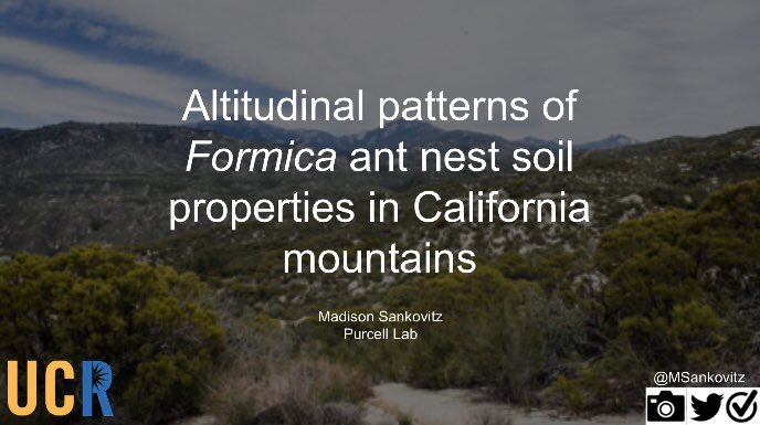 Are you at #EntSoc19 and interested in ant ecology? Come to my research talk this morning in room 262 at 11:20 am! @IUSSI_NAS <br>http://pic.twitter.com/RRIlAtB6ko – à America's Center