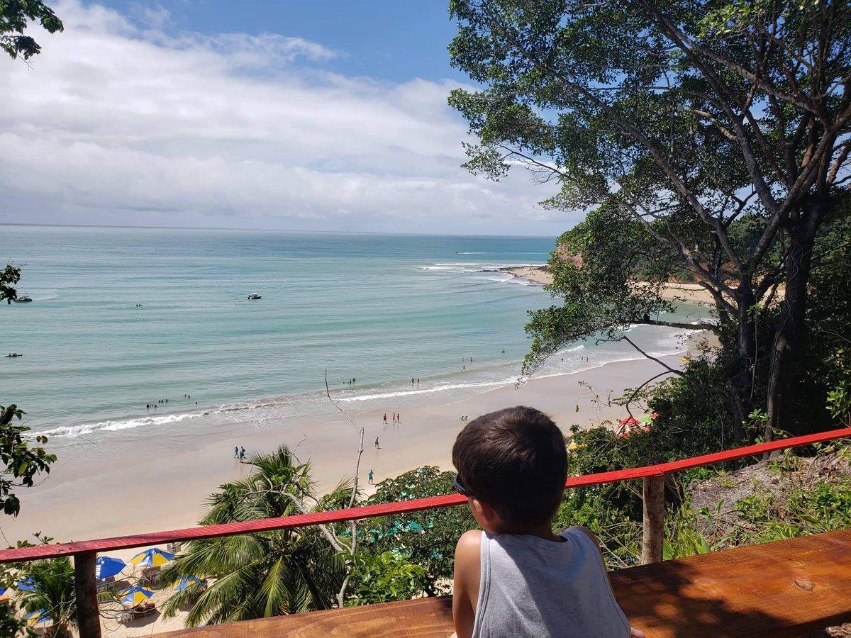 A Praia do Madeiro em Pipa, no Rio Grande do Norte foi eleita como uma das 25 mais belas do Brasil. De lá é possível ver de perto um montão de golfinhos.  Confira essa é outras dicas https://vamosporai.com/destaques/praia-de-pipa-rn-o-que-fazer/… #PraiadePipa #Pipa #PraiadoMadeiro pic.twitter.com/V7juRuHm01