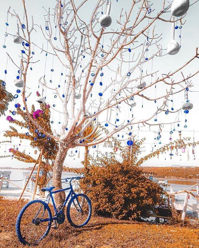 "Autumn in the Mediterranean is so pretty that even trees need their ""nazar"" (evil eye) beads. 🧿 #Travel #MondayMotivation #NazarBeads 📷 engiinkocak / IG #Turkey #Antalya #Demre"