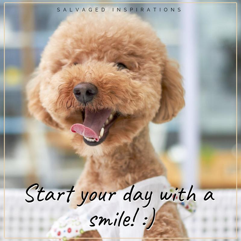Happy Monday friends! :)#morninggreetings #quotes #dailyquotes #dailygrind#salvagedinspirations #paintedfurniture #furniturepainting #DIYfurniture