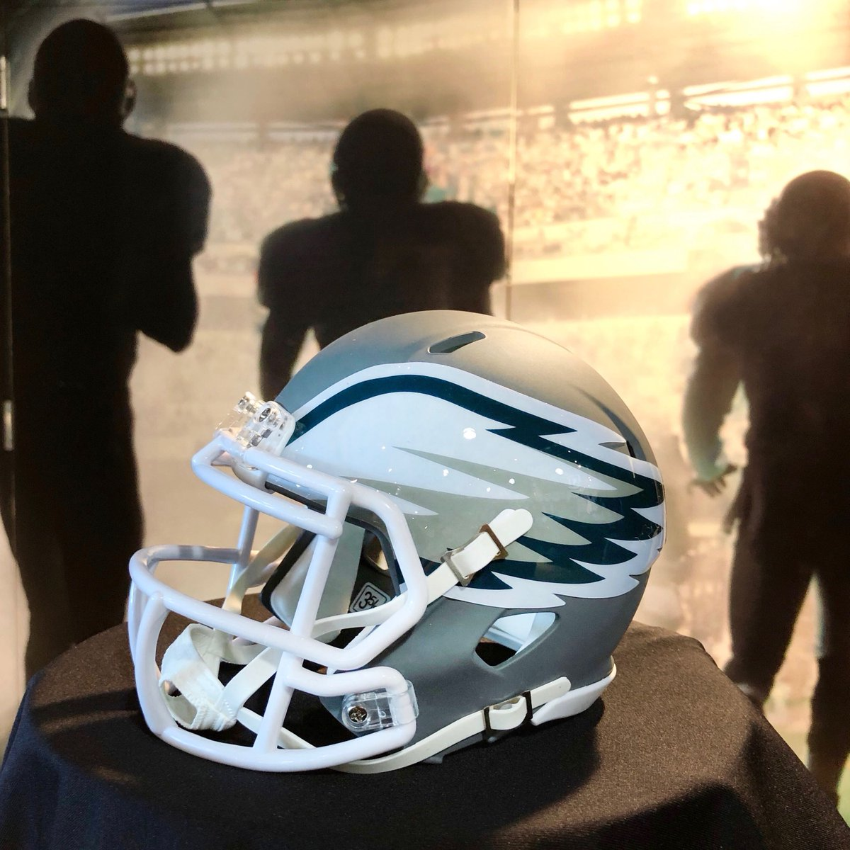 Our limited-edition gray mini helmet is a unique decorative piece.  #FlyEaglesFly  <br>http://pic.twitter.com/upayqxmtGC