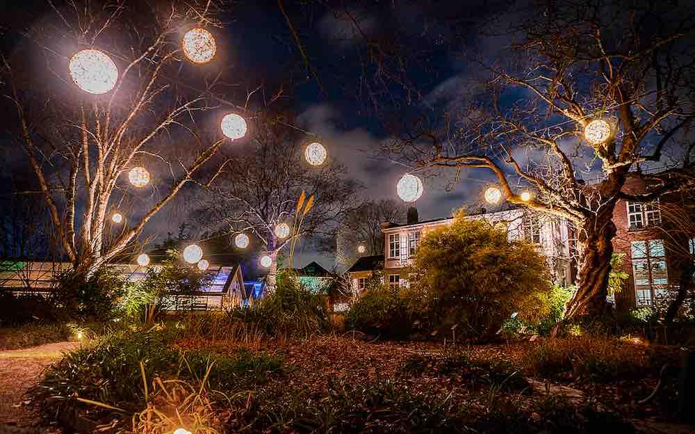 #Winteravonden in @HortusAmsterdam. Een knusse #wintersfeer met duizenden glinsterende lichtjes in de tuin. In de kleurrijk verlichte kassen loop je langs eeuwenoude palmen en bijzondere tropische planten.  19-22 en 26-29 december  en 2-5 januari 2020   Foto's: Jan Jaap Hubeek https://t.co/tModjeIgcd