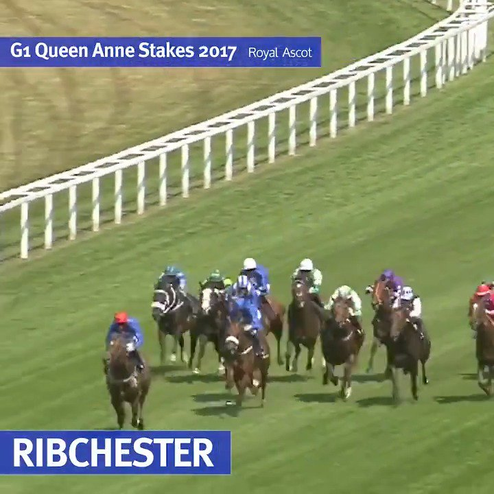 "#Ribchester, the fastest horse to ever run the straight mile at Royal @Ascot 🔥👇  ""He's got to be the best I've trained, especially breaking the track record here today"" 🏇💨 - @RichardFahey in @SportingLife on Ribchester's G1 Queen Anne Stakes victory 🏆"