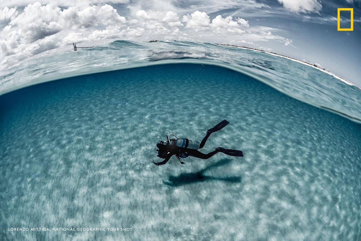 A diver explores a stretch of sand along the seafloor in this tranquil over-under scene by Your Shot photographer Lorenzo Mittiga