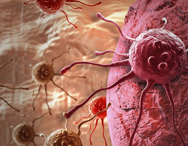 test Twitter Media - Argonne researchers have created a neural architecture search that automates the development of deep-learning-based predictive models for cancer data. #deeplearning https://t.co/fIktd0gtrx https://t.co/W1Rd30c7A1