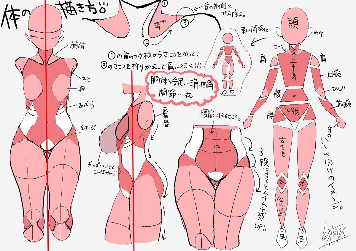 個人的な体の描き方、パーツごと。