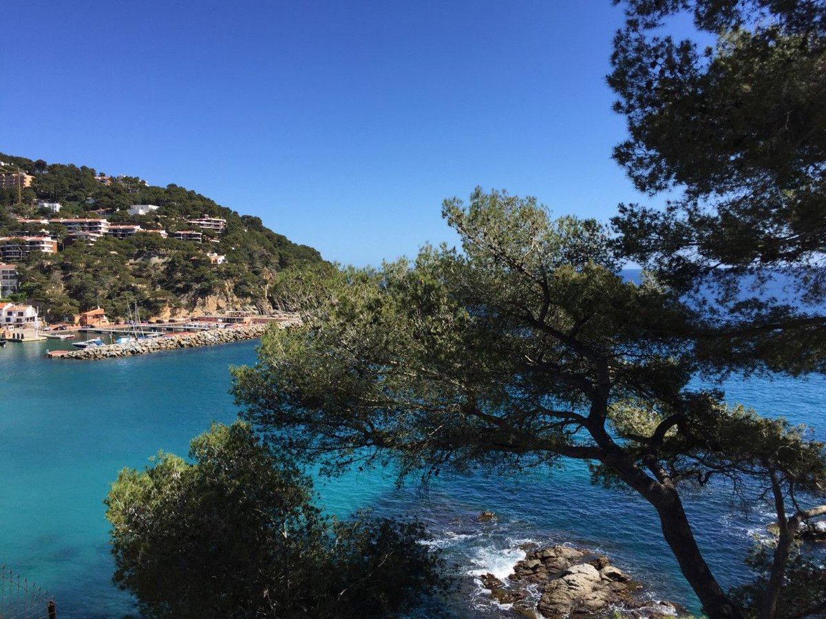 En la espectacular #CostaBrava, el #CamíDeRonda se convierte en una bella #ruta de este litoral y en uno de los tesoros a descubrir durante todo el año😍👉https://buff.ly/35d6sK2vía @Maicarivera_ para @larazon_es 📷by @Maicarivera_ @CostaBravaGi @catexperience #SpainRoute