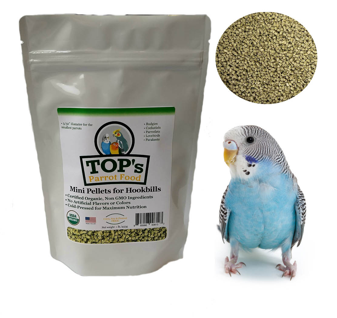 It's no surprise that #parakeets love the new TOP's Mini Pellets. Just the right size! Learn more: http://ow.ly/wmfI50xf1wQ  #parrot #parrots #birbs