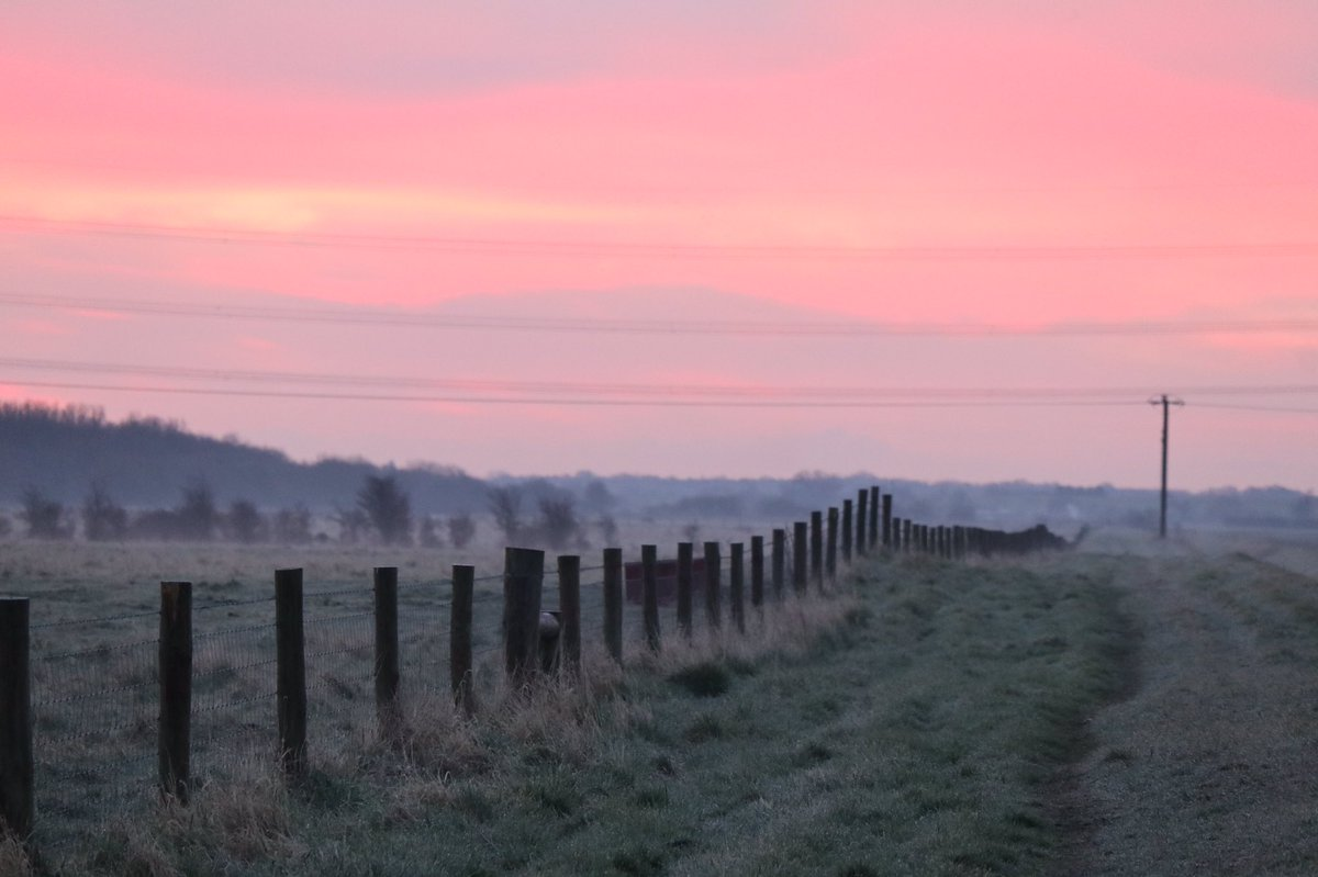 Its okay to not be okay, getting out in nature is free, beneficial to health & well-being, does this soft pink sunrise uplift you? @WickenFenNT #StormHour @StormHour #POTW  – at wicken fen nature reserve