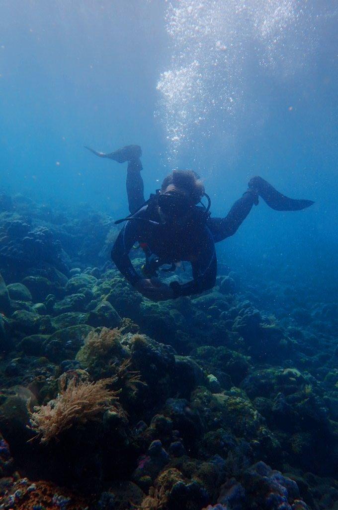 #divetulamben #visitindonesia #divingindonesia pic.twitter.com/SWPx2GCG6W