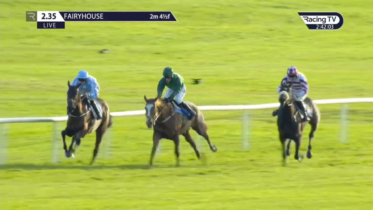 😱🤯🥇LARQUEBUSE (Saddler Maker) is fired home by @_Davy_Russel_ for the most unlikely of victories @Fairyhouse! Officially a dead-heat, that is the second win this season and first over hurdles for the mare trained by  @gelliott_racing  👏  🎥 @RacingTV