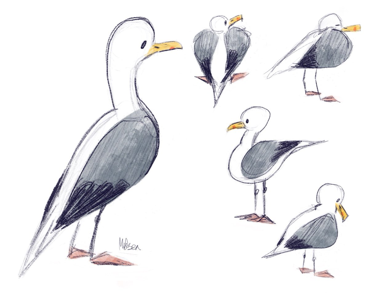 observational birb drawings from my holiday this year. #observationaldrawing #gesturedrawing #birbart #birbs #birdlover