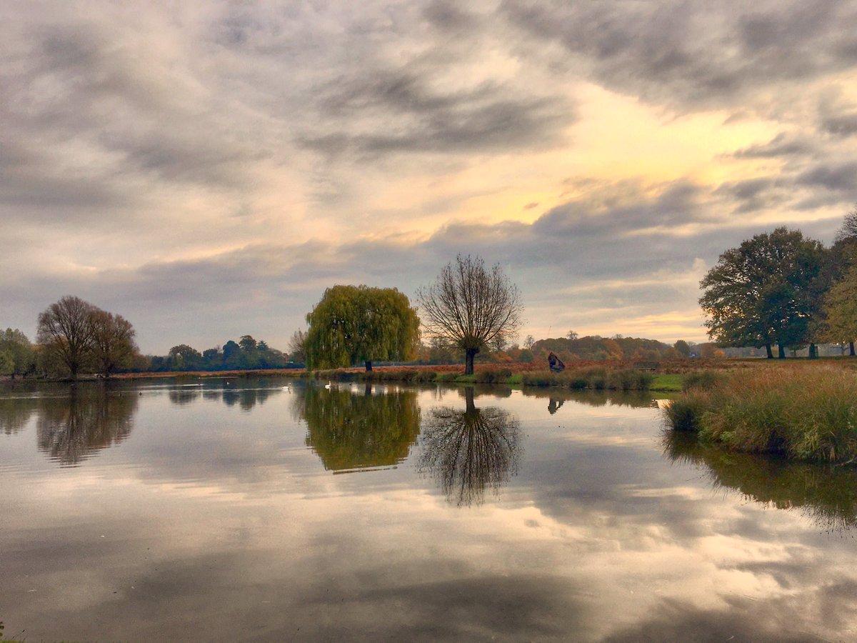 Early morning reflections at BushyPark Teddington 16/11  #StormHour @StormHour #POTW