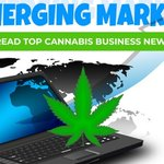 Image for the Tweet beginning: Latest #CannabisBusiness industry news, legal