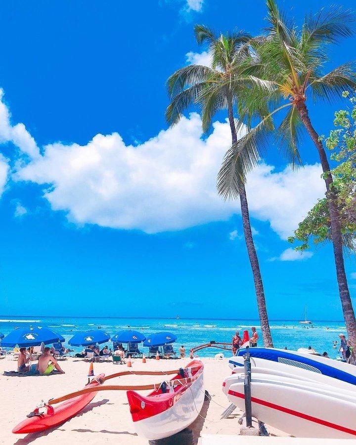 Goedemorgen / aloha kakahiaka Ondertussen op #Hawaii RT @diveoahu  Good Morning! Have an Aloha Day!   Sea you in the water    @kaori_officia on IG #diveoahu #surfing #beach #beachlife #genic_beach #lealeahawaii #instahawaii #lovehawaii #love #travelgram #trip #travel #hawaii
