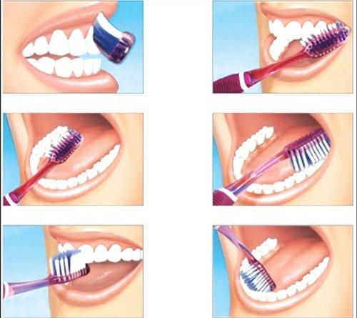 Una mala higiene dental es la principal causa de problemas gastrointestinales. ¡La limpieza bucal aplicada 3 veces al día y efectuada de forma correcta, es garantía de salud! 🤓
