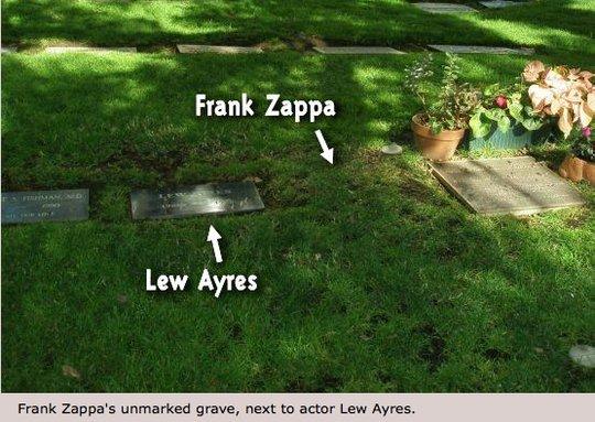 #FrankZappa #Zappa