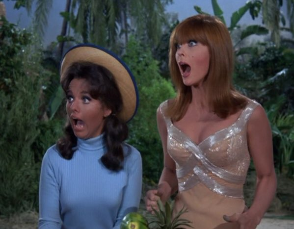 Ginger or Mary Ann  #SillyReasonsToArgue <br>http://pic.twitter.com/Y0N5t3vsJ6
