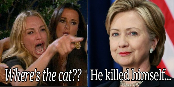 #SillyReasonsToArgue Whether or not Epstein killed himself <br>http://pic.twitter.com/YokVo5aMNw