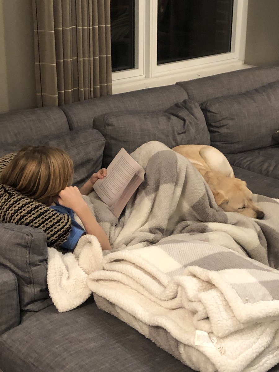 What a beautiful sight. 10 year old Yates and 6 month old Thunder. So cozy!