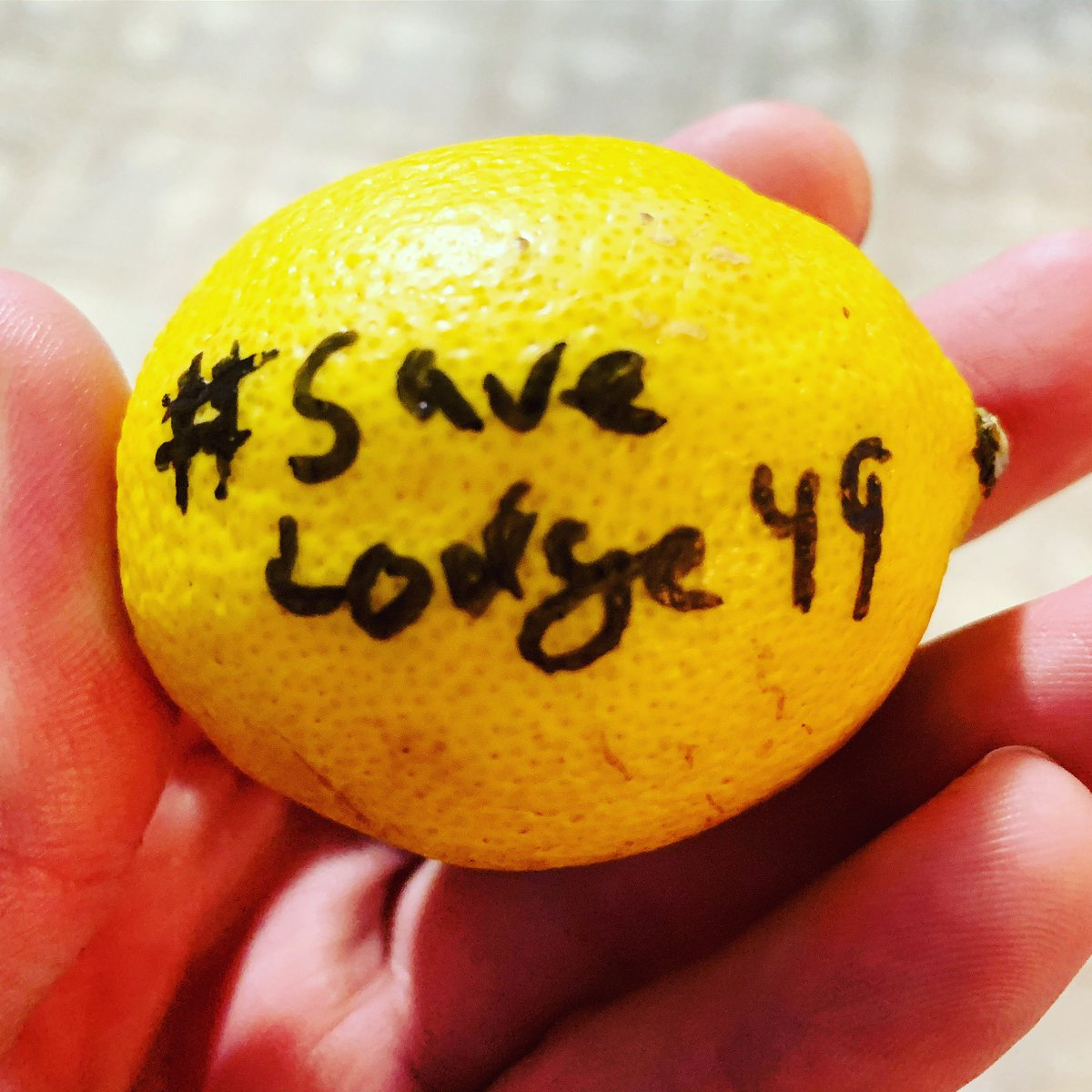 Why should you #JoinLodge49 ? Because we're on the Lemon Standard now! #SaveLodge49