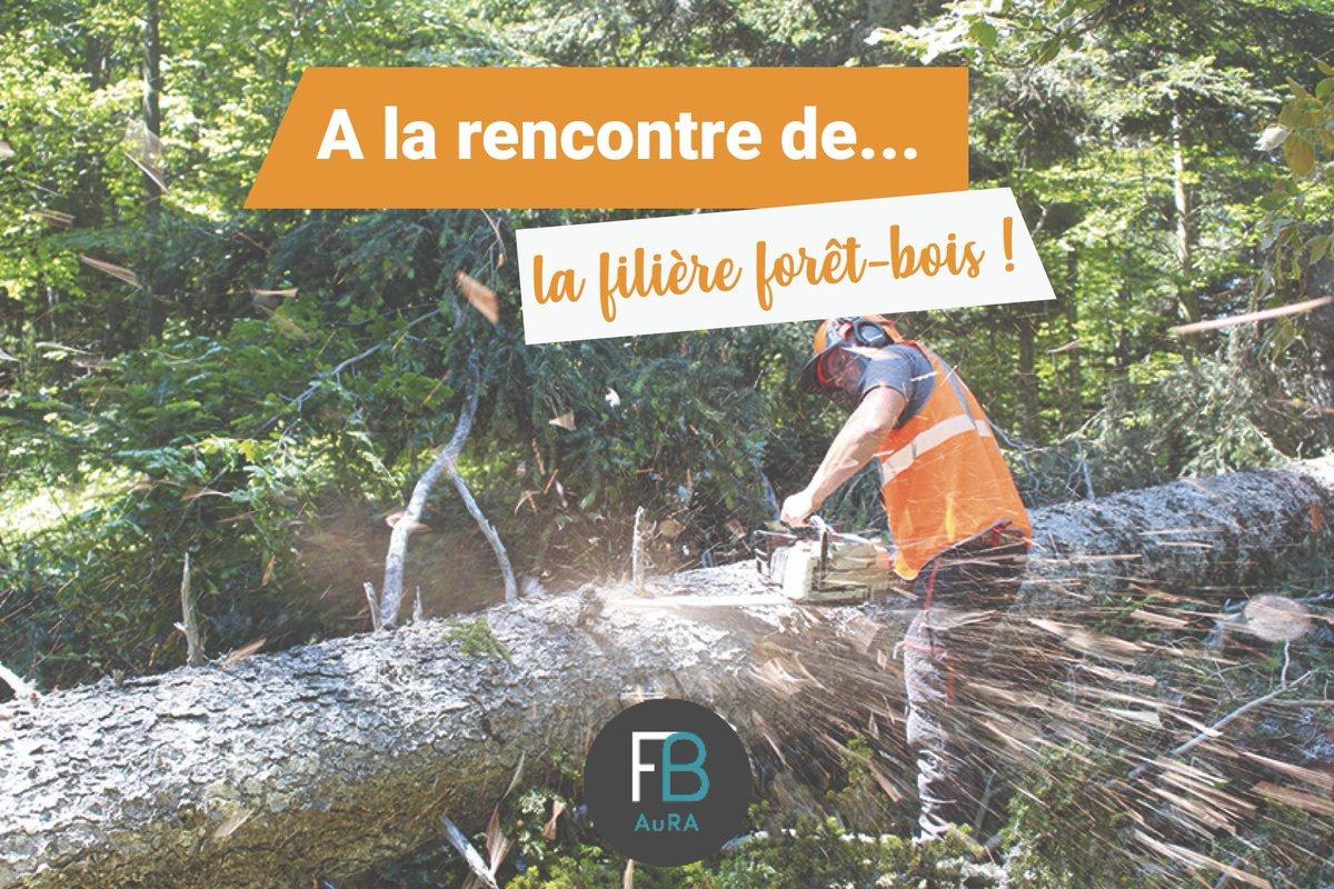 La filière de la #forêt et du #bois fait preuve de dynamisme face à de nouvelles problématiques. Nous avons interrogé @FiliereBois à ce sujet ! 🌲  Partez à la rencontre de la filière forêt-bois 👉 https://t.co/Z6xlw3U3gK  #MDM2020 #Metiers #Environnement #Orientation #Formation https://t.co/a22hQkXVIH