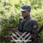 Image for the Tweet beginning: Happy #GivingTuesday! This year we