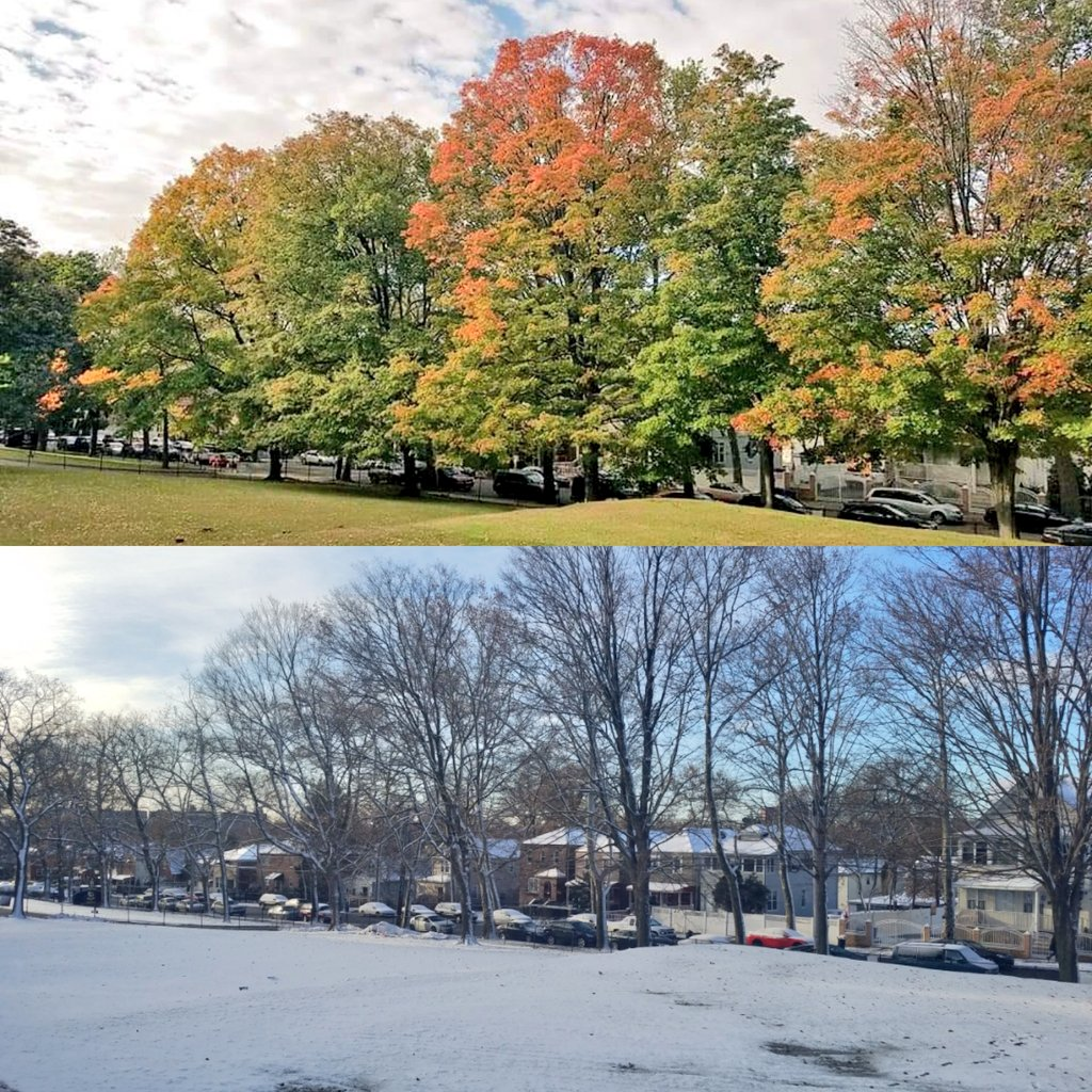 Luckily we were spared the brunt of the winter storm. Then and now.  #TransformationTuesday <br>http://pic.twitter.com/enceWEMZ2Q – à Mount Saint Michael Academy