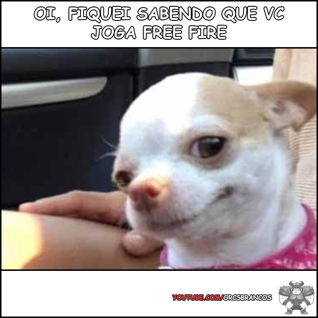 """Achei"" #memesff #memes #meme #memesbrasileirospic.twitter.com/KCrbvvbmEQ"