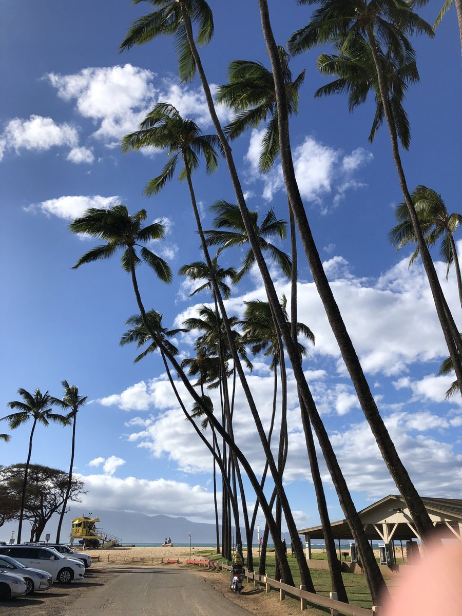 test Twitter Media - Beautiful beach day at Baldwin beach.#cmweather #Maui #Paia #Northshore #Mauinokaoi https://t.co/65OIYcZyA5