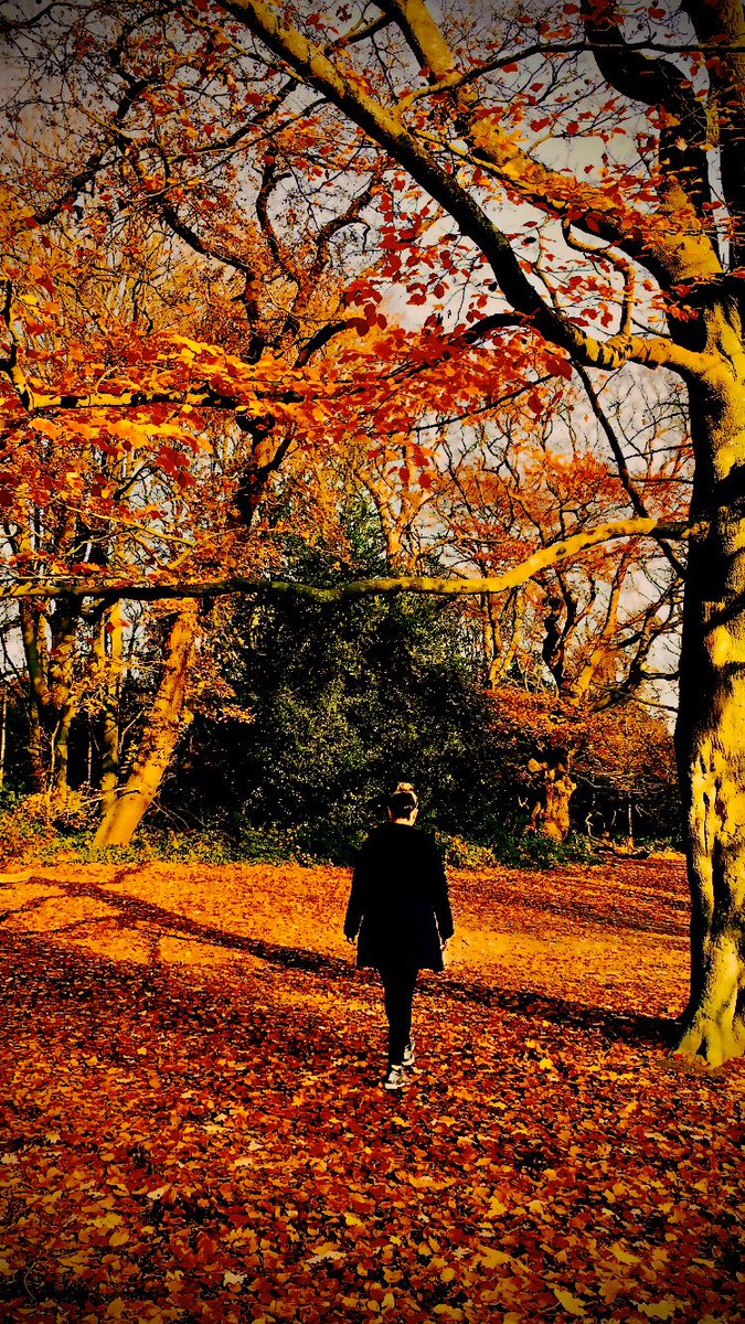 Jane, out for a lovely autumn walk with her friends.